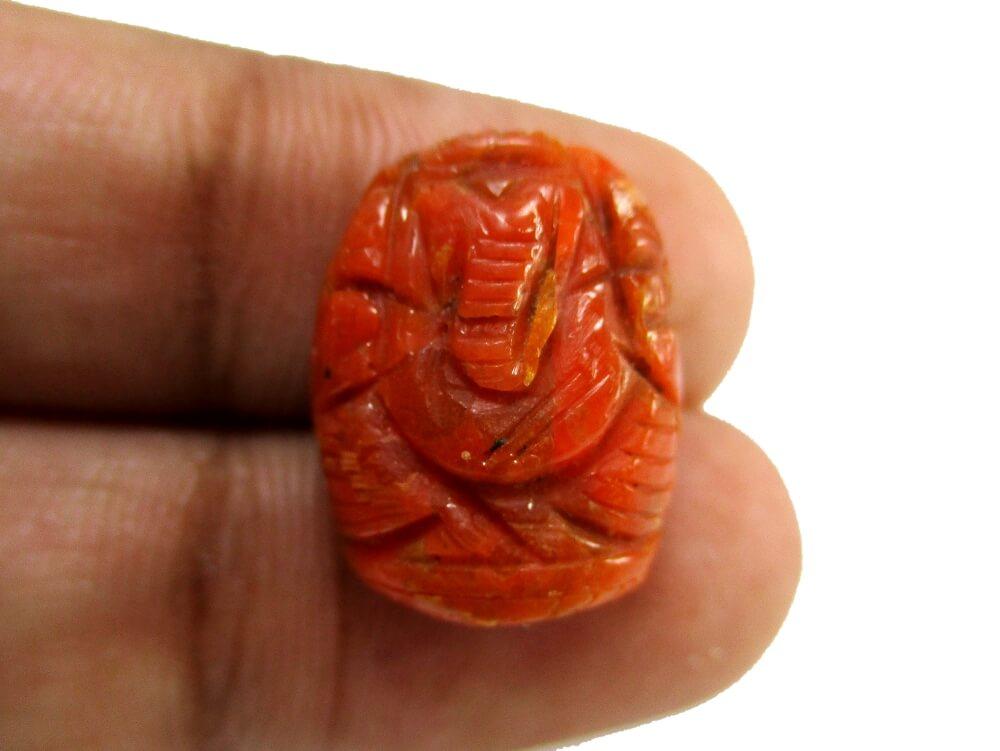 Red Coral - 9.00 Carat - GFE04030 - Image 3