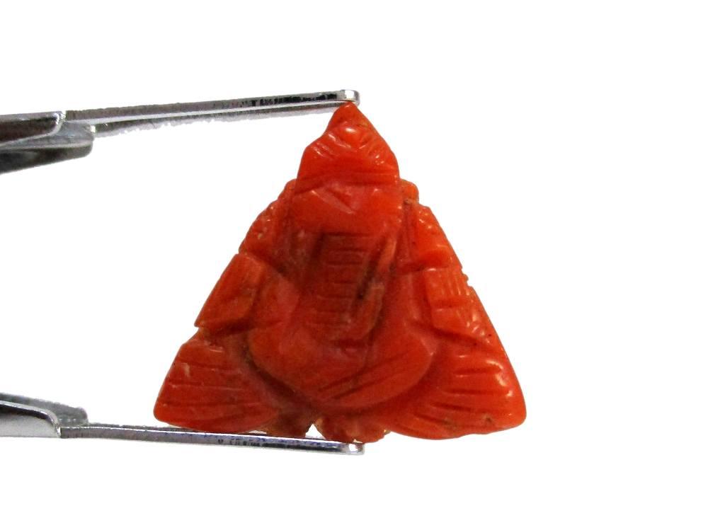 Red Coral - 3.20 Carat - GFE04032 - Image 2