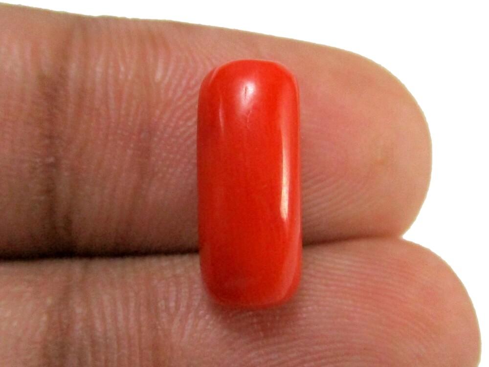 Red Coral - 4.33 Carat - GFE04050 - Image 3