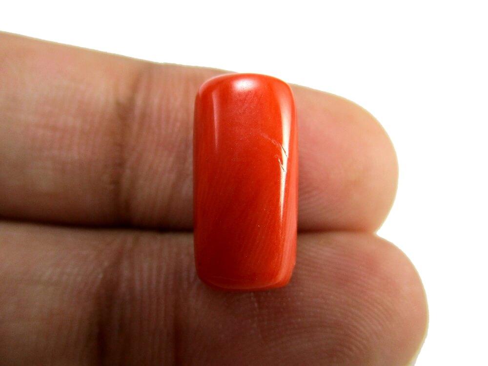 Red Coral - 7.84 Carat - GFE04061 - Image 3